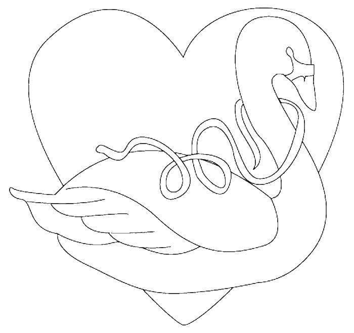 Лебедь с лентой и сердце
