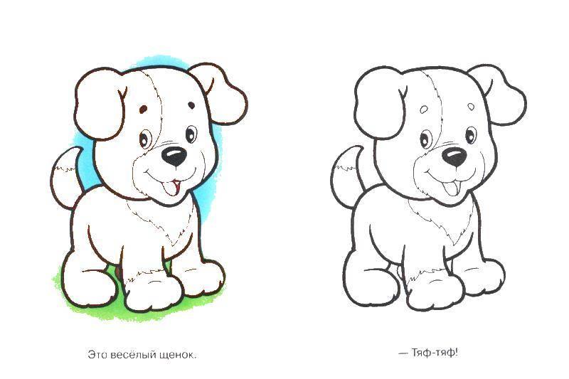 раскраски собаки раскраска