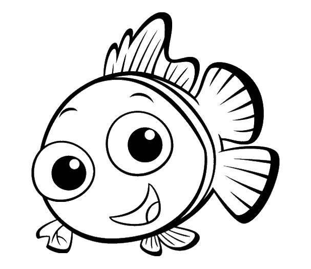 Немо рыба клоун