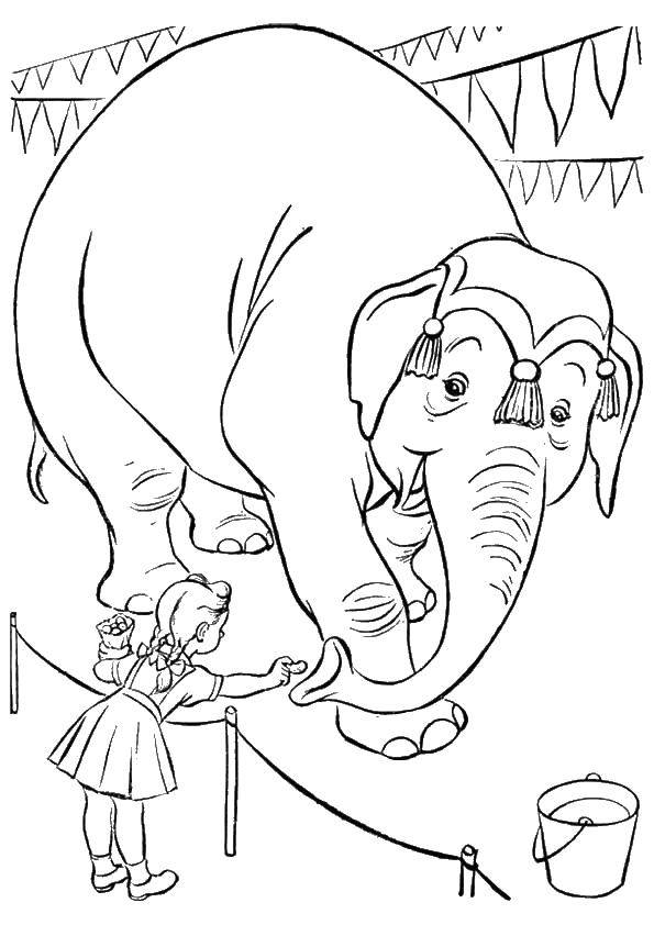Слоник и девочка