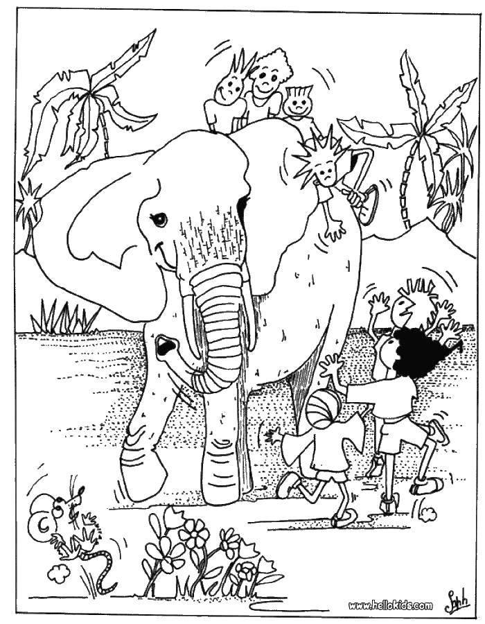 Дети и слон