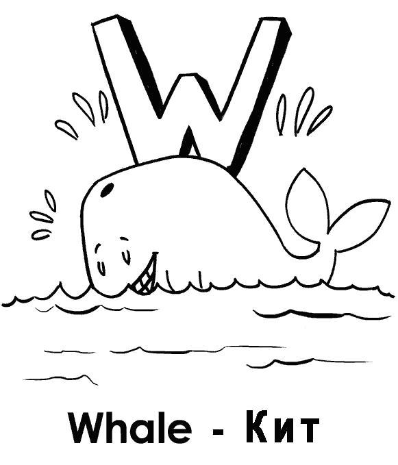 кит  учим английский Whale кит