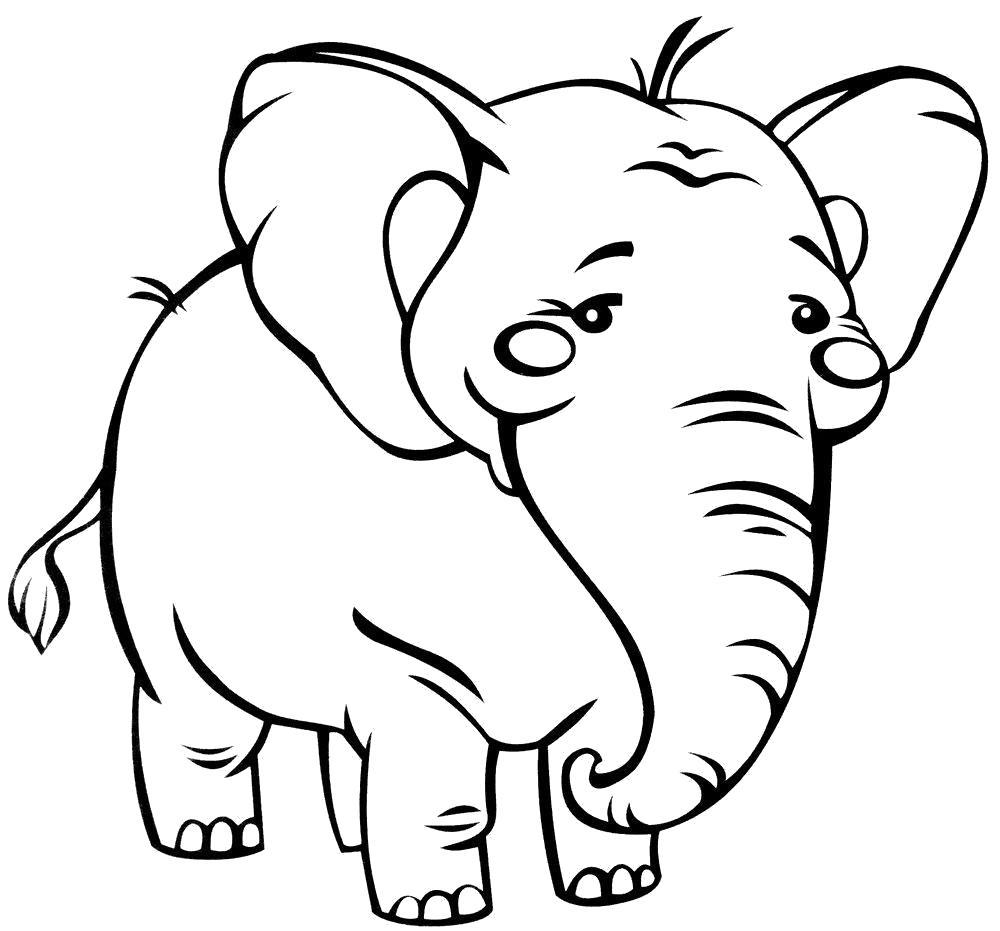 Раскраска слоненок идет
